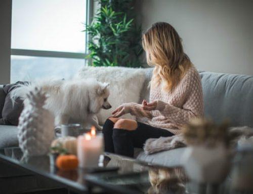 Consejos para mantener caliente tu hogar este invierno