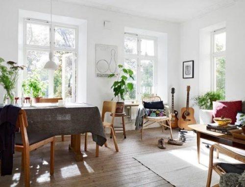 Decora tu casa de manera original y simple utilizando plantas.